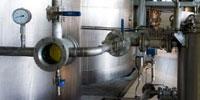 Detalle proceso extracción aceite de oliva virgen extra